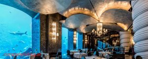 Top Best Restaurant In Dubai